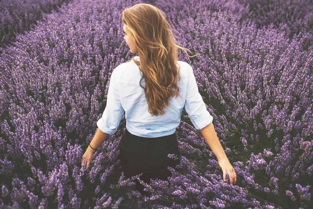 Beauty Tipp 7_Lavendel
