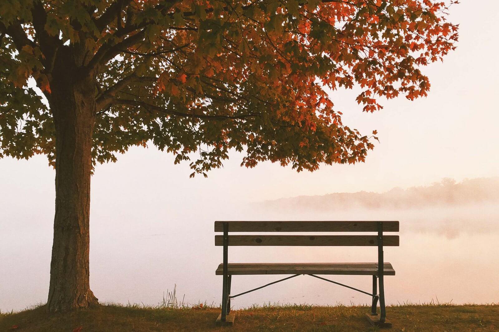 Erden im Herbst
