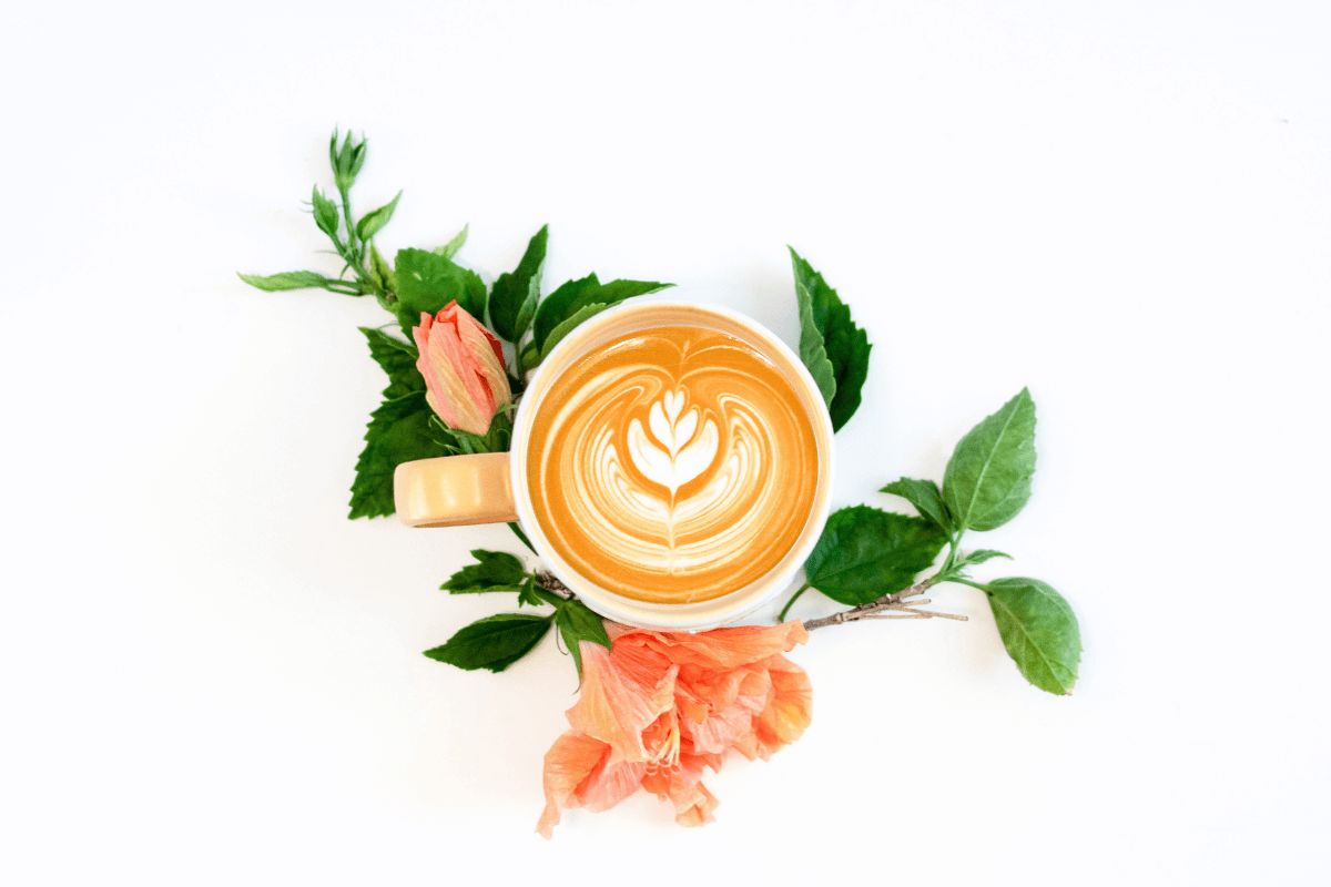Header Blogpost Pflanzenmilch
